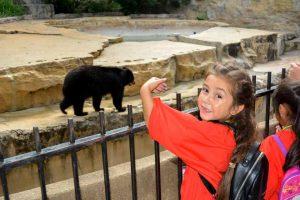 Child Pointing at Black Bear